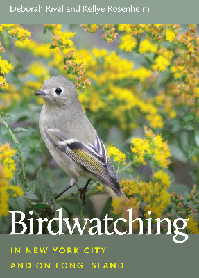 Birdwatching book